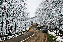 Kelardasht road