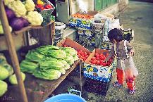 raihaneh in greengrocer