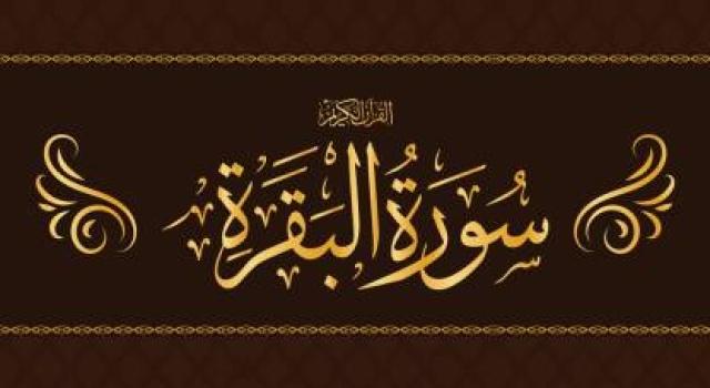 Top 10 Surah al Baqarah Most Beautiful Reading